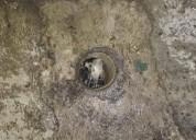 Destapes de drenaje y tuberia automatizado sin romper piso