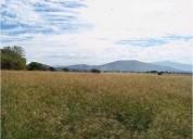 Terreno cerca centro san isidro mazatepec470000 m2