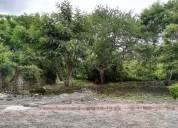 venta de terreno plano en real del puente, xochitepec, morelos.cv 1832 477 m2