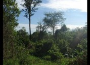 Rancho en tizimin yucatàn 1,300 hectareas 1309 m2