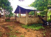 Rancho de 120 hectáreas en tizimín 120 m2