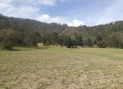 Terrenos en zona ecoturistica singuilucan hidalgo facilidades de pago 980 m2