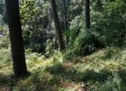 Venta terreno colonia del bosque cuernavaca morelos - mt25 954 m2