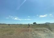Terrenos rÚsticos al norte km 35 carretera a juarez 12000 m2