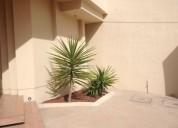 En renta departamento amueblado en jardines de san francisco 2 dormitorios