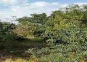 Mexico d f xochimilco santa maria tepepan terreno residencial en venta 6000 m2