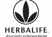 Distribuidor independiente herbalife