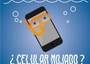 Reparacion expres de celulares lerdo