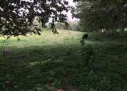 Barato rancho terreno 7000 m2