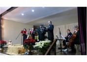 Músicos profesionales de orquesta / bodas y conciertos