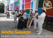 Grupo musical jarocho en toluca jarochos guayacan