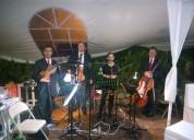 Musica para bodas tlacotalpan veracruz