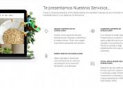 Páginas web en guadalajara