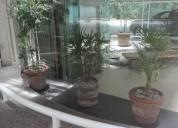 Ph en renta en polanco con terraza 2 dormitorios 210 m2