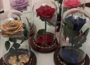 Asesoría en preservación de flores