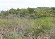 Terreno en venta de 5 hectareas linares nuevo leon