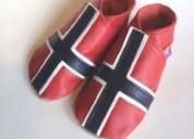Noruego, holandés y danés / cursos completos.