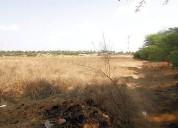 Atencion desarrolladores terreno 1 ha en la tortuga p desarrollo 10000 m2