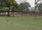 Rancho en acayucan 11.000.000 m² m2