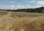 Terrenos con escritura y riego la ladera amealc 30.000 m² m2