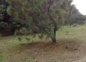 Terreno en bosque de la primavera en zapopan