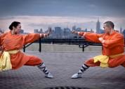 Clases de kung fu, sanda y tai ji
