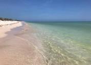 Lotes frente al mar en sisal yucatan