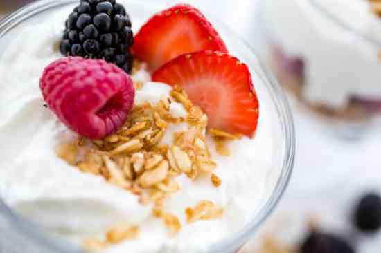 Kéfir Yogurt Búlgaros SCOBY Té Kombucha y Tíbicos