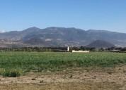 Rancho en venta en guadalupe victoria
