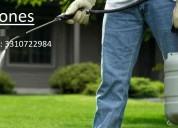 Servicios de fumigacion y jardineria