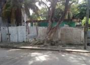 Terreno de 12 x 40 colonia manigua 480 m2