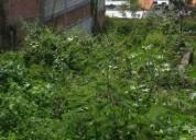 Venta de terreno en morelos en emiliano zapata