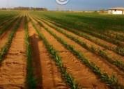Excelente terrenos para granja en nextipac 5.803 m² m2