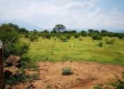 Se venden 5 hectareas 53.000 m² m2. oporunidad.