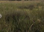 Excelente terreno superficie 5000 m 5.000 m² m2