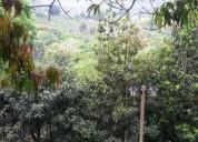 Venta 2 hectareas en biosfera del cielo 2.000 m² m2