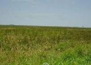 Excelente terreno 200 hectareas.