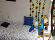 Roomies cuarto para dama amueblado con television