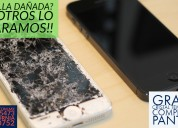 Reparacion de ipod en torreon.