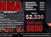 Artes marciales mixtas mma