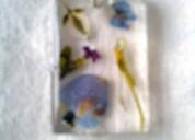 Lindas flores bello detalle