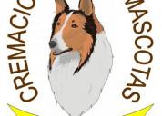 Lomas de sote: crematorio para mascotas 5517302513