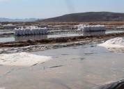 Sal de mar en grano