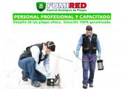 Fumigación y control de plagas, cucarachas y más