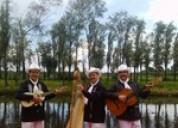 Trio jarocho para fiestas y eventos en cuauhtÉmoc