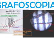 A perito en grafoscopia, documentoscopia y dactilo