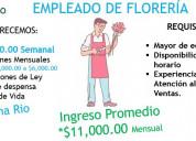 Auxiliar de florerÍa