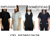 Servicios  domesticos 5528913628