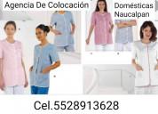 Empleadas domésticas 5528913628